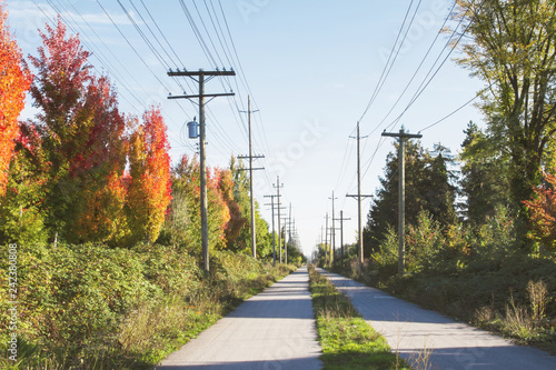View of the Arubutus Greenway in Vancouver in the fall;  Unusual absence of peop Wallpaper Mural