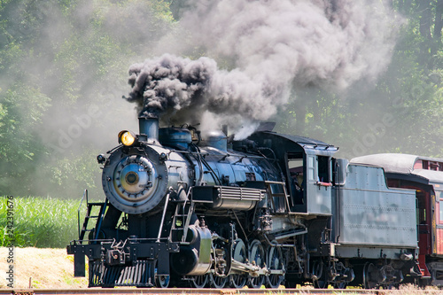 Photographie  Steam Passenger Train Pulling into Picnic Area