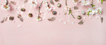 Easter Holiday Background. Flat-lay Of Tender Spring Almond Blossom Flowers On Branches, Feathers, Quail Eggs Over Light Pink Background, Top View, Copy Space, Wide Composition. Greeting Card Concept