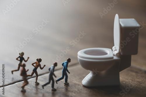 Fotografie, Obraz  トイレに駆け込むミニチュア