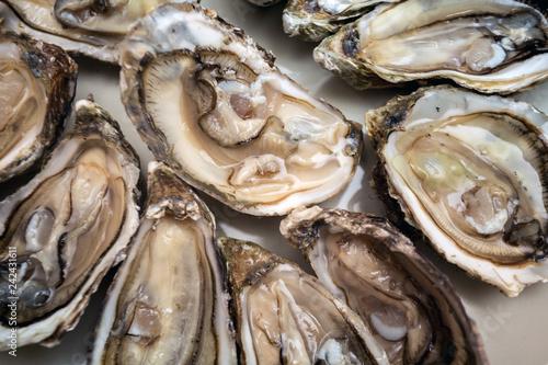 oysters on a large plate Slika na platnu