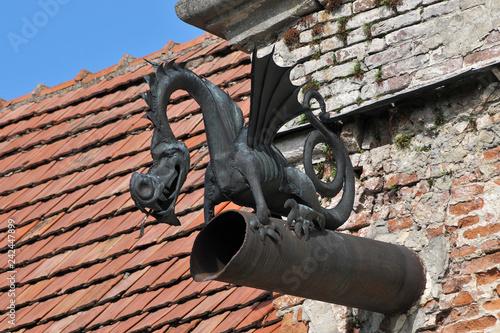 Fotografia, Obraz  Old drainpipe in the form dragon closeup.
