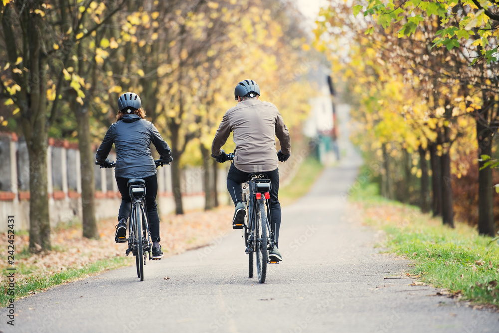 Fototapety, obrazy: A rear view of senior couple with electrobikes cycling outdoors on a road.
