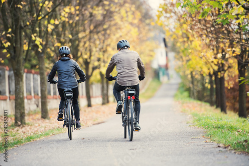 Obraz A rear view of senior couple with electrobikes cycling outdoors on a road. - fototapety do salonu