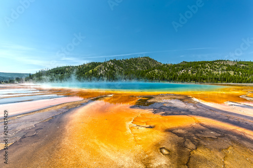 Fototapeta Grand Prismatic Spring in Yellowstone National Park