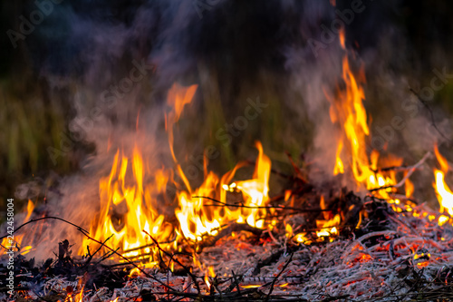 Forest wildfire at night whole area covered by flame and clouds of dark smoke Fotobehang