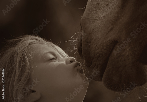 Fotografie, Obraz  Girl kissing a horse close up