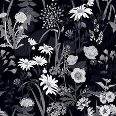 Fototapeta Czarno-Biały Seamless background with wild flowers. Black and white pattern.