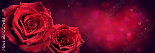 Couple Of Red Roses In Heart Shape With Red Passion Background