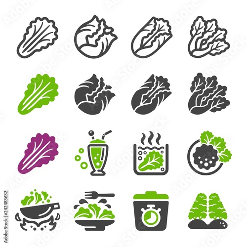 Fototapeta lettuce icon set,vector and illustration obraz