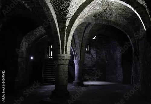 Fotografie, Obraz  Dungeon interior castle