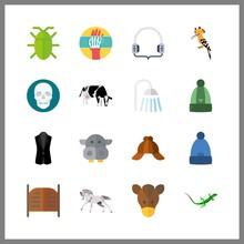 16 Head Icon. Vector Illustration Head Set. Skull And Hippopotamus Icons For Head Works
