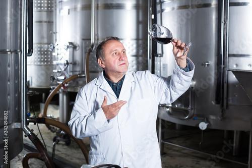 Fotografie, Obraz  Positive wine maker controls quality of wine