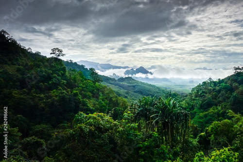 Staande foto Asia land Khao Sok National Park landscape, Thailand