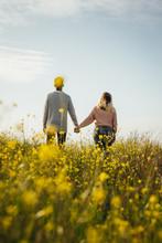 Loving Couple In Meadow Admiri...