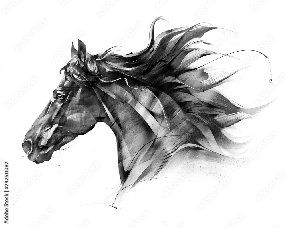 Fototapety, obrazy: sketch side portrait of a horse profile on a white background