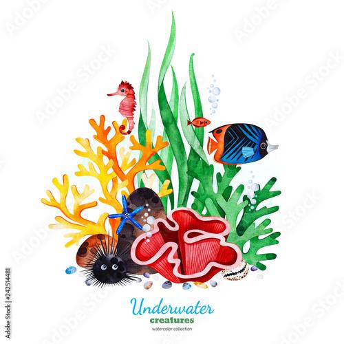 Fototapeta premium Podwodne stworzenia. Akwarelowa kompozycja z wielobarwnymi koralami, muszelkami, wodorostami i tropikalnymi rybami. Idealny na zaproszenia, dekoracje na przyjęcia, do druku, projekt rzemieślniczy, kartki okolicznościowe, blog, tekstura.