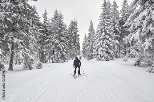Fototapeta Cross-country skiers on trail after heavy snowfalls, Jakuszyce, Poland. obraz
