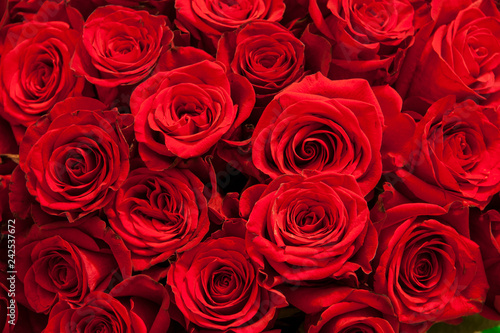 Fotografia  Romantic background of a bouquet of red