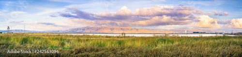Stampa su Tela Panoramic sunset landscape of the marshes of south San Francisco bay, Mission Pe