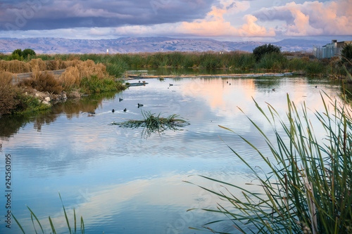Stampa su Tela Sunset landscape of the marshes of south San Francisco bay, Sunnyvale, Californi