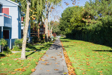 Alley Next To An Apartment Complex; Fallen Leaves On The Ground On A Sunny Day; Sunnyvale, San Francisco Bay, California