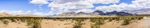Panoramic View Of A Remote Area Of Death Valley National Park; Creosote Bushes Covering The Sandy Terrain; California
