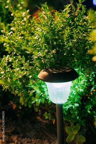 Aluminium Prints Garden Solar Garden Light, Lantern In Flower Bed. Garden Design. Solar