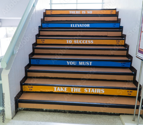 """Obraz na plátne  Famous quotes displaying at the stairs to wisely inspire working people say """" There is no elevator to success"""