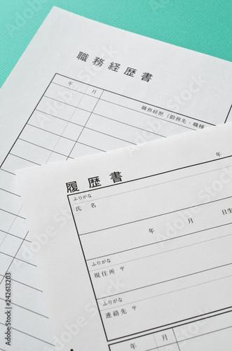 Obraz na plátně  履歴書