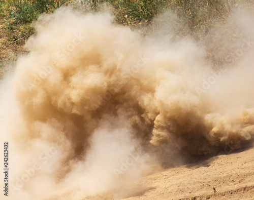 Obraz Dust cloud on nature as background - fototapety do salonu