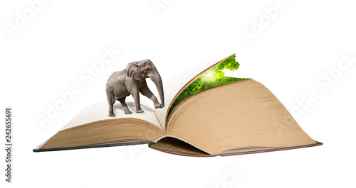 Photo  Elephant walking on the book pages to hidden nature