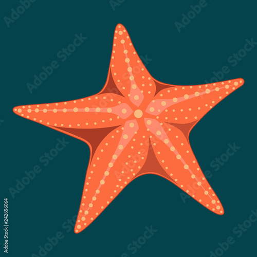 Vector image of a starfish on a blue background. Canvas Print