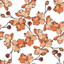 Vector Orange Orchid Botanical Flower. Engraved Ink Art. Seamless Background Pattern. Fabric Wallpaper Print Texture.
