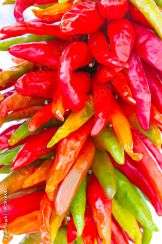 Fotografie, Obraz Hanging Strand of Red Chili Peppers in New Mexico