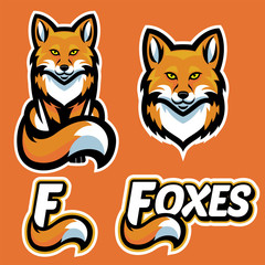 fox mascot character set