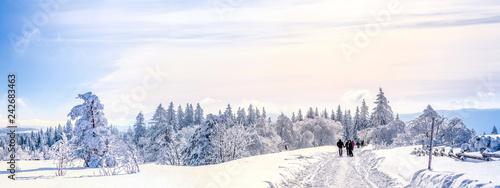 Spoed Foto op Canvas Europese Plekken Schwarzwald, Winterlandschaft