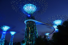 Garden By The Bay, Singapore - Futuristic Light And Sound Event Show On The Supertrees Grove