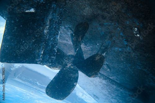 Fotografie, Obraz  A screw ship under water