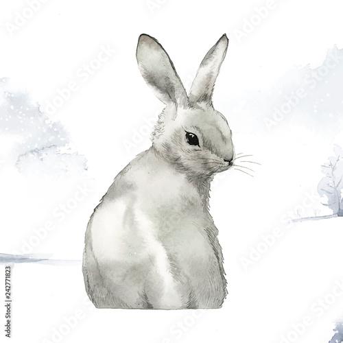 Fototapeta premium Dziki szary królik w zimowej krainie czarów namalowany akwarela wektorem