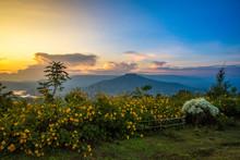 Landscape Thailand Beautiful M...