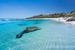 canvas print picture - Stunning Aussie Beach