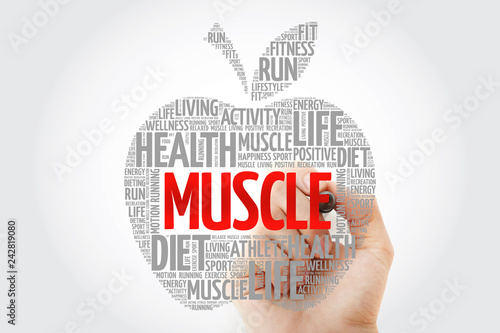Photo Muscle apple word cloud with marker, health concept