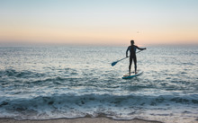 Man Practicing Paddle Surfing With Neoprene In A Sunrise