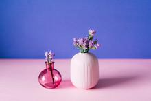 Violet Sea Lavender Flowers In...
