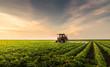 Leinwanddruck Bild - Tractor spraying pesticides at  soy bean field