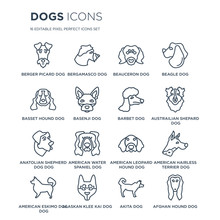 16 Linear Dogs Icons Such As Berger Picard Dog, Bergamasco Alaskan Klee Kai American Eskimo Dog Dog Modern With Thin Stroke, Vector Illustration, Eps10, Trendy Line Icon Set.
