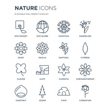 16 Linear Nature Icons Such As...