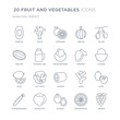 Collection of 20 FRUIT AND VEGETABLES linear icons such as Papaya, Palm, Guava, Hazelnut, Horseradish, Olive, Mango, Lemon line icons with thin line stroke, vector illustration of trendy icon set.