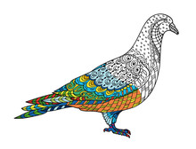 Drawing Stylized Dove (pigeon)...